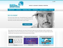 New Mexico Brain Injury Advisory Council